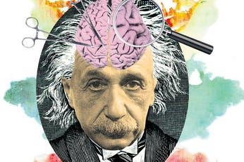 Inteligencia, el regreso del coeficiente intelectual